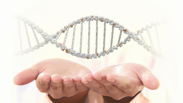 genetica 2